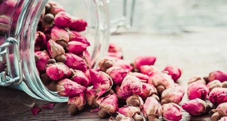 خواص گیاه دارویی گل محمدی در طب سنتی