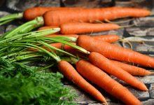 هویج و جعفری
