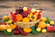 مزاج میوه های تابستانی