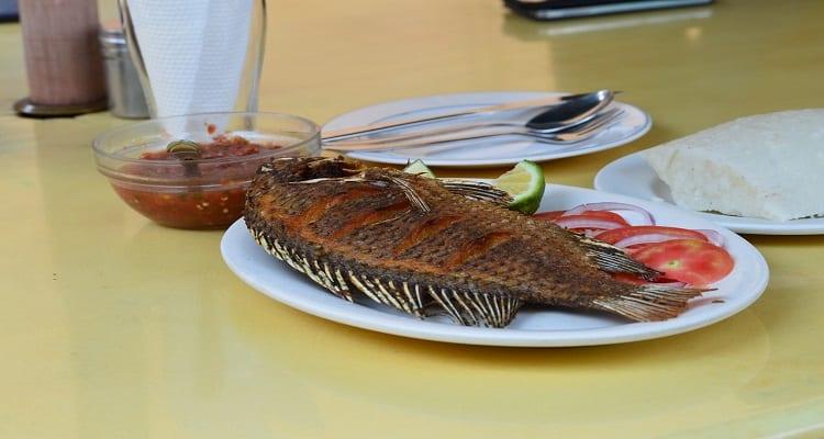 مصرف ماهی تیلاپیا و عوارض خطرناک آن