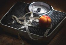 کنترل چاقی با کنترل غذا