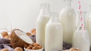 تدابیر مصرف شیر در طب سنتی