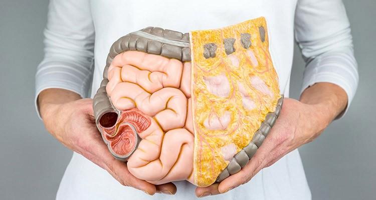 سلامتی دستگاه گوارش با طب سنتی