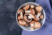 آیا قارچ غذای مناسبی است؟