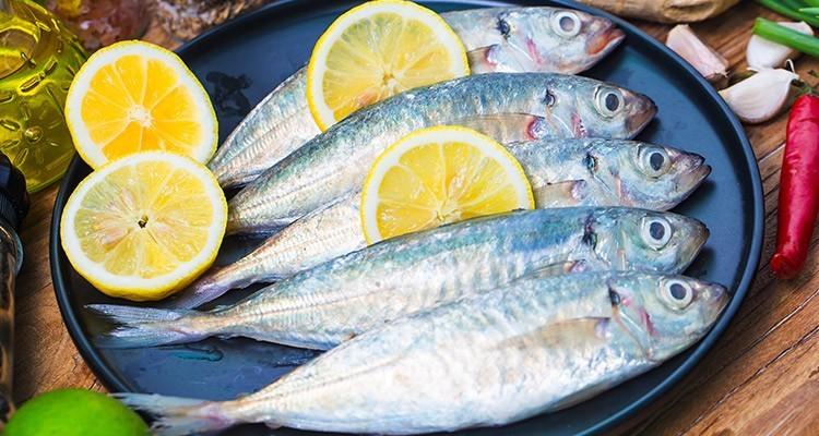 تدابیر مصرف ماهی در طب سنتی