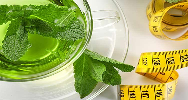 تأثیر عرق نعنا بر کاهش وزن در طب سنتی