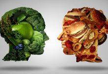تاثیر غذاهای چرب بر حافظه