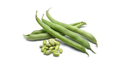 خواص و مزاج لوبیا سبز در طب سنتی