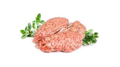 خواص و مزاج مغز در طب سنتی