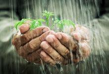 خواص درمانی آب نیسان