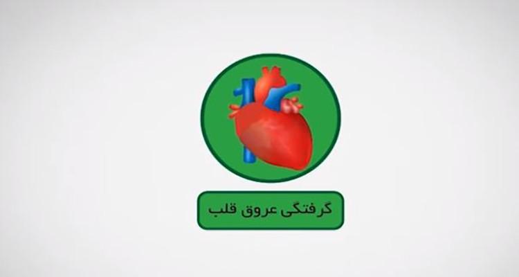 درمان و پیشگیری از بیماری های قلبی از دیدگاه طب سنتی ایران