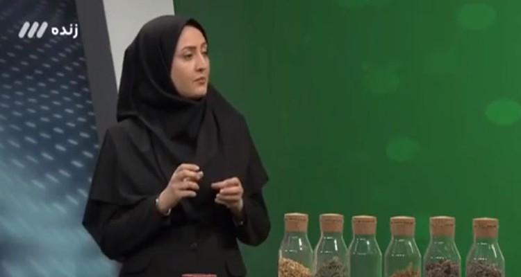 طب ایرانی و راهکارهای کاهش درد در بیماران ضایعه نخاعی