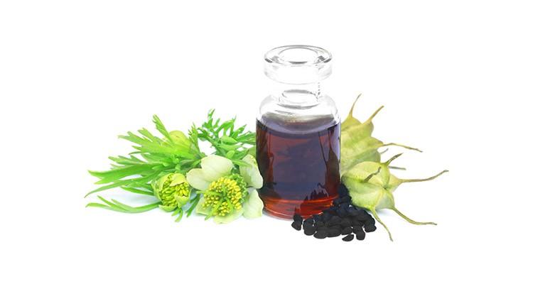 خواص و مزاج روغن سیاه دانه در طب سنتی