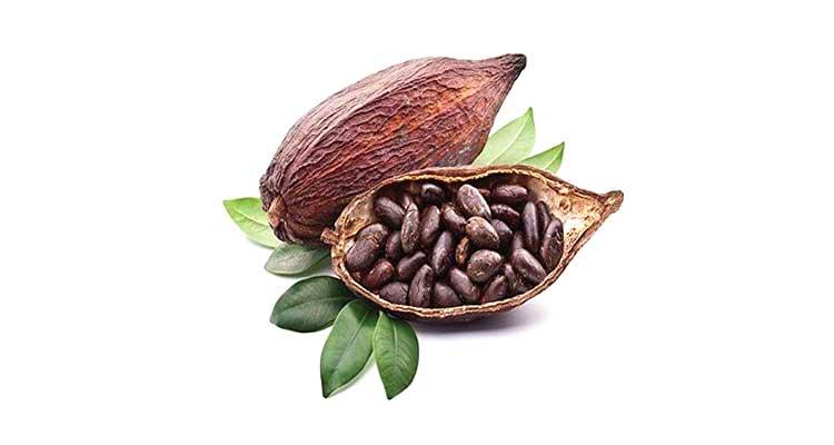 خواص و مزاج کاکائو در طب سنتی