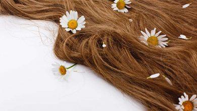 آموزش ساخت رنگ مو طبیعی