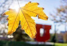 اصول حفظ تندرستی در فصل پاییز