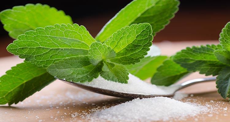 استویا ؛ جایگزینی سالم و طبیعی برای قند و شکر
