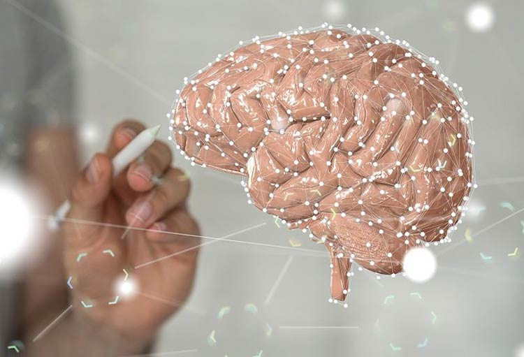چطوری بفهمیم مزاج مغز ما چیه؟