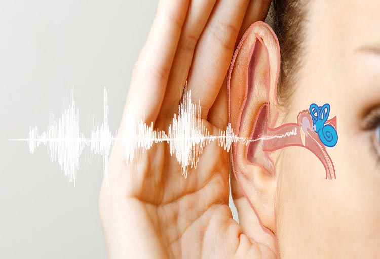 تدابیر حفظ سلامت گوش از منظر طب ایرانی