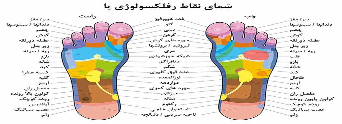 نقاط ماساژ و رفلکسولوژی پا
